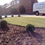 Turfing and contemporary planting.