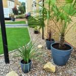 Feature plants / planters / sandstone rocks.