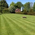Lawn cutting repair & care.