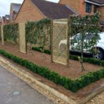 Pleached photinia x fraseri, buxus hedging & oak borders.