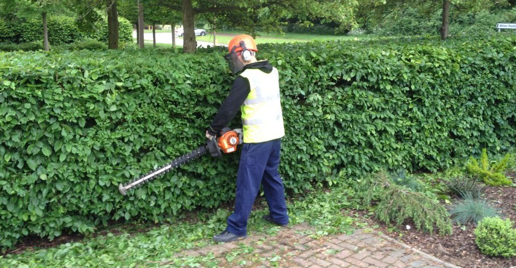 Hedge cutting page - MDC Landscapes